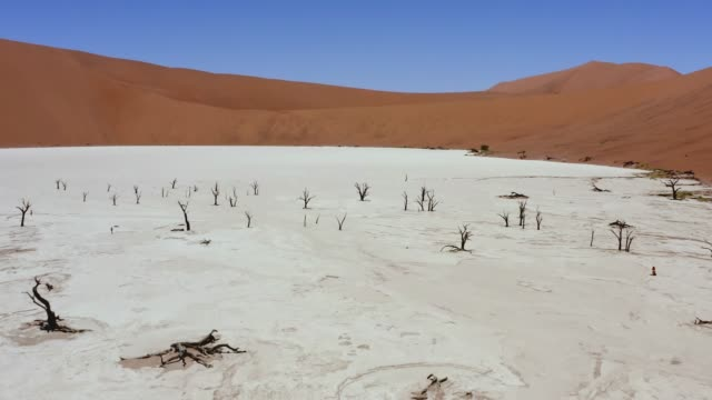 it's the dry season - drought stock videos & royalty-free footage