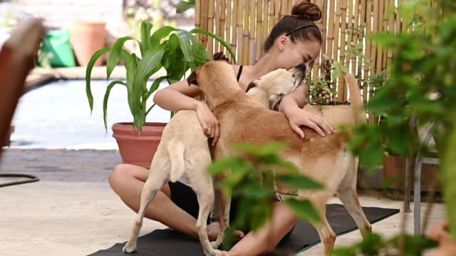vidéos et rushes de c'est l'heure du yoga et tout le monde est invité - assis