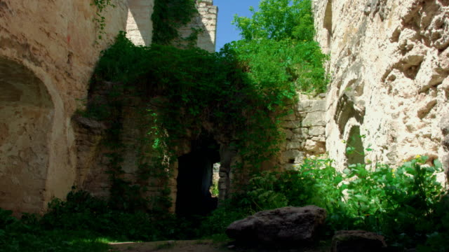 ivied ruins of old castle - courtyard stock videos and b-roll footage