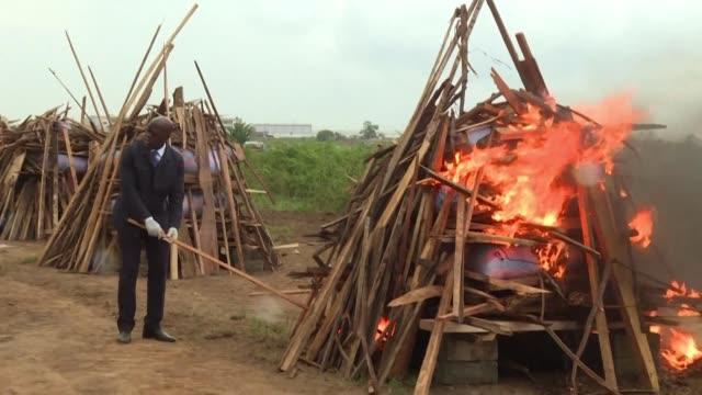 ivoirien authorities burn three tonnes of pangolin shells seized in illegal trafficking busts - pangolino video stock e b–roll