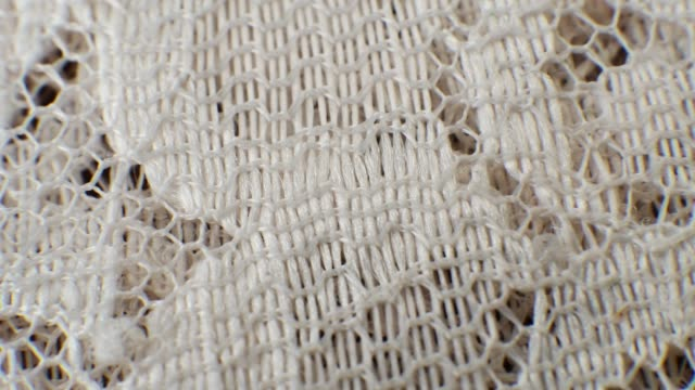 Ivory Lace Floral Pattern Texture Fabric Macro Close-up Zoom