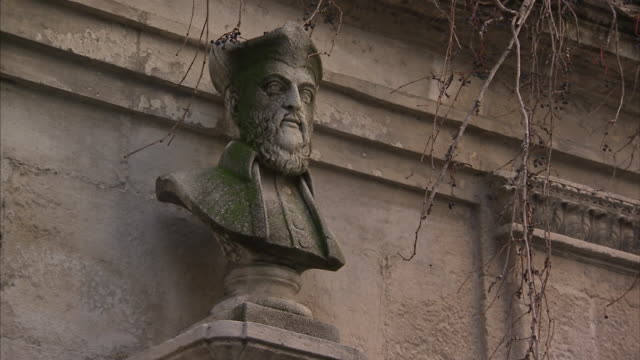 Ivy sways near a bust of Nostradamus above the Nostradamus Fountain at Saint Remy de Provence in France.