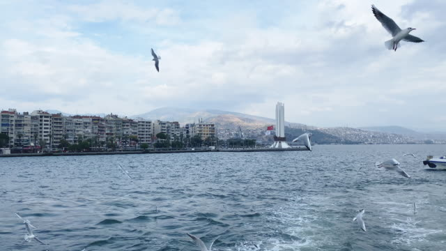 izmir city view from ferry with seagulls - izmir stock videos & royalty-free footage