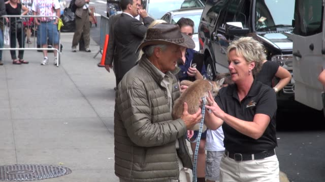 jack hanna holding a lynx, and with his daughter at the late show in new york 9/27/11 - jack hanna stock-videos und b-roll-filmmaterial