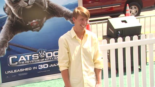 vídeos y material grabado en eventos de stock de jack mcbrayer at the 'cats dogs the revenge of kitty galore' premiere at hollywood ca - jack mcbrayer