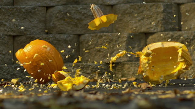 cu slo mo jack o lantern pumpkin falling on ground and smashing / morristown, new jersey, usa - jack o' lantern stock videos and b-roll footage