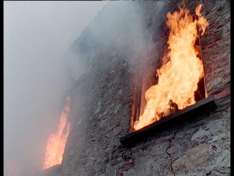 Jackdaw watches as barn burns down