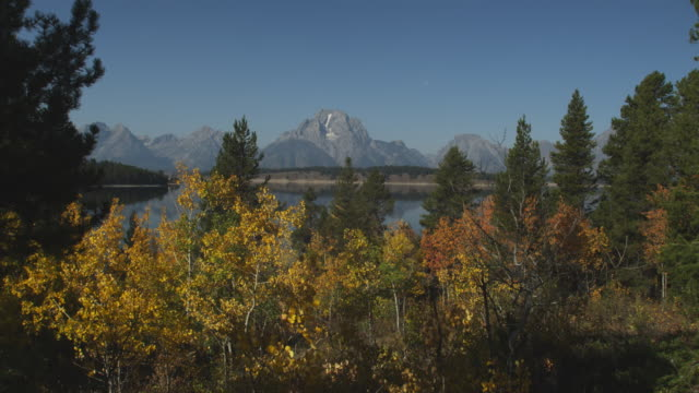 jackson lake sits between the grand teton range and a forest. - grand teton stock-videos und b-roll-filmmaterial