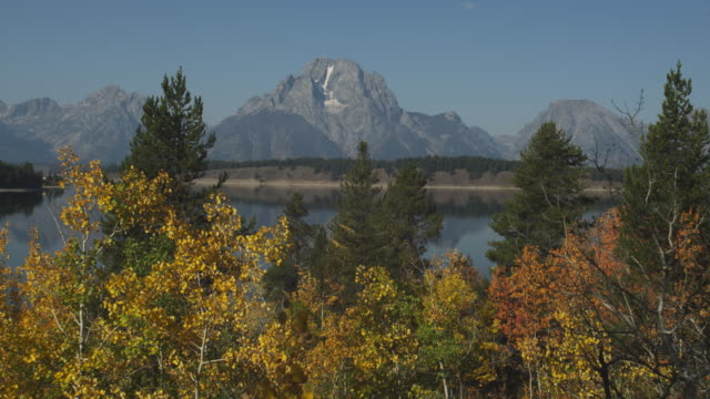 stockvideo's en b-roll-footage met jackson lake sits between the grand teton range and a forest. - grand teton