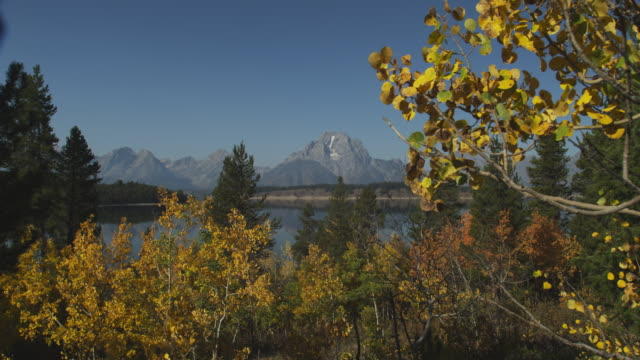 jackson lake sits between the grand teton range and a forest. - grand teton stock videos & royalty-free footage