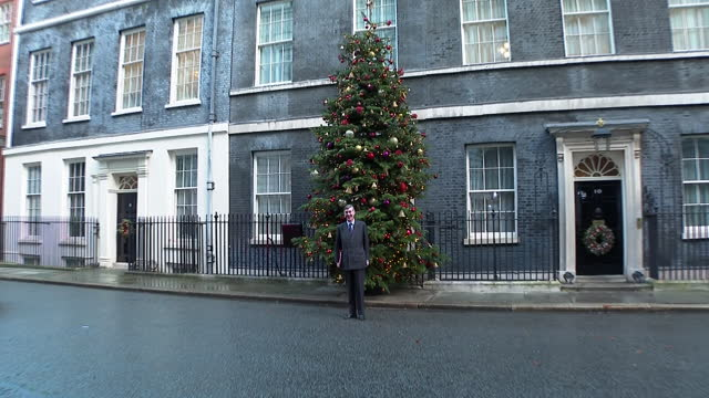 jacob rees-mogg standing next to the christmas tree outside 10 downing street - standing stock videos & royalty-free footage