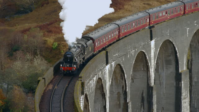 jacobite steam train passes over glenfinnan viaduct. glenfinnan, scottish highlands, scotland, uk - grass family stock videos & royalty-free footage