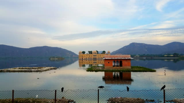 jal mahal - water palace in jaipur, india - rajasthan stock videos and b-roll footage