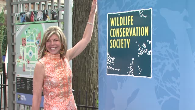 jamee gregory at the the wildlife conservation society safari! india gala at new york ny. - wildlife conservation stock videos & royalty-free footage