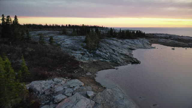 james bay - 寒帯林点の映像素材/bロール