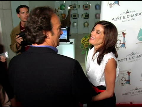 james belushi and teri hatcher at the 'burnt toast and other philosophies of life' by teri hatcher after party at aqua restaurant and lounge in... - teri hatcher stock videos & royalty-free footage