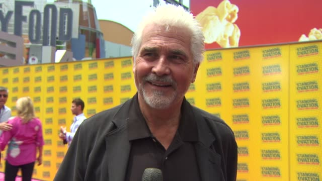 vídeos de stock, filmes e b-roll de james brolin on the pink carpet, on why he wanted to be executive producer on this film, on who should see this film, and on if his wife, barbra... - barbra streisand