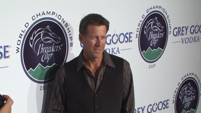 james denton at the breeders' cup winners circle sponsored by grey goose vodka at los angeles ca - grey goose vodka stock videos & royalty-free footage