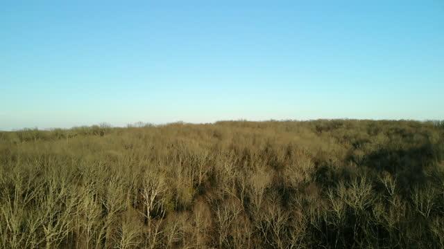 james river basin battlefield missouri early spring hardwood forest 4k aerial video - hardwood stock videos & royalty-free footage