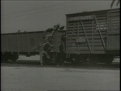 vídeos de stock, filmes e b-roll de james whitmore's narration expresses the dire unemployment situation as a bunch of men hop off a moving freight train / - oeste dos estados unidos