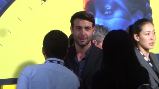james wolk outside the premiere of hbo's watchmen at the cinerama dome in hollywood in celebrity sightings in los angeles - cinerama dome hollywood stock videos and b-roll footage