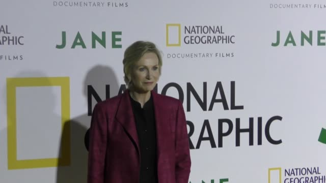 jane lynch at the premiere of national geographic documentary films' 'jane' at the hollywood bowl on october 09, 2017 in los angeles, california. - ドキュメンタリー映画点の映像素材/bロール