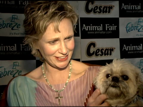 jane lynch speaks about her dog at the animal fair magazine's 7th annual 'paws for style' celebrity pet fashion show presented by febreze at avalon... - jane lynch stock videos and b-roll footage