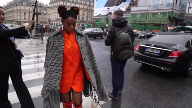 slomo janelle monae arriving at stella mccartney at celebrity sightings paris fashion week womenswear fall/winter 2020/2021 on february 24 2020 in... - stella mccartney marchio di design video stock e b–roll
