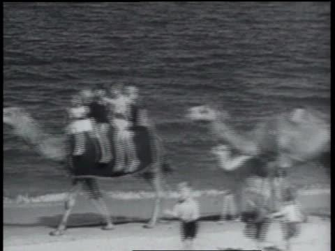 january 24, 1934 b/w tourists riding camels at the beach - 1934 bildbanksvideor och videomaterial från bakom kulisserna