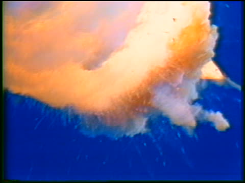 january 28, 1986 space shuttle challenger exploding during ascent / documentary - 1986 stock videos & royalty-free footage