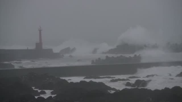 japan, aug 14: high waves pound a fishing port in muroto, kochi prefecture, western japan, on aug. 14 as powerful typhoon krosa approaches the... - tsunami stock videos & royalty-free footage