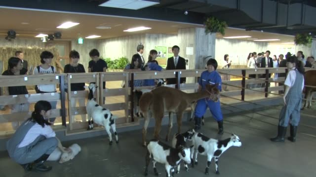A Tokyo personnel dispatch company unveiled a new farm on the 13th floor of its Tokyo headquarters on Wednesday Pasona Group Inc based in the...
