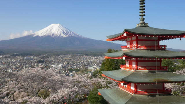 japan beautiful landscape mountain fuji and chureito red pagoda with cherry blossom - pagoda点の映像素材/bロール