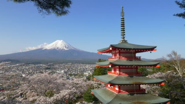 japan beautiful landscape mountain fuji and chureito red pagoda with cherry blossom - pagode stock-videos und b-roll-filmmaterial