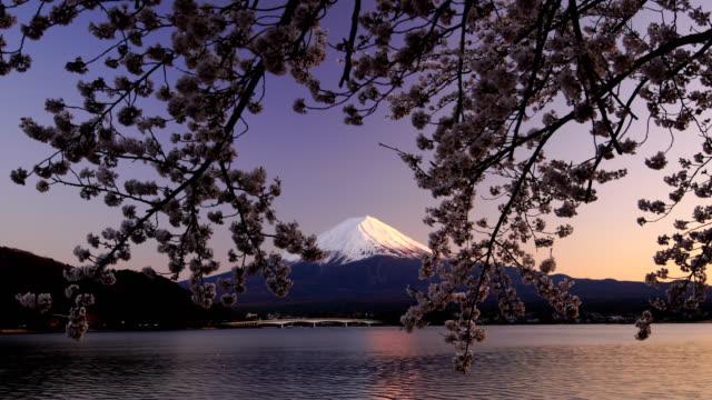 vidéos et rushes de japon le beau paysage de montagne fuji avec sakura fleur de cerisier - printemps