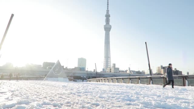 japan -jan. 23: the heaviest snow in four years hit tokyo on monday. by tuesday morning, about 360 people had been injured in tokyo and surrounding... - slippery stock videos & royalty-free footage