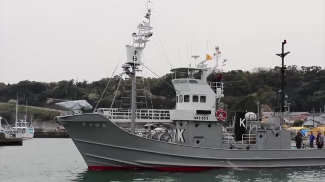 stockvideo's en b-roll-footage met a whaling vessel left a western japan port on friday on the last mission of what the government calls a scientific research program before the... - cetacea
