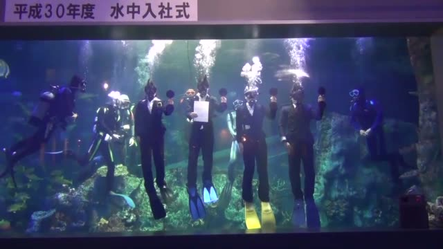 vídeos y material grabado en eventos de stock de toba aquarium in mie prefecture central japan holds an annual underwater welcome ceremony for its new employees they are wearing business suit and... - vestimenta de negocios formal