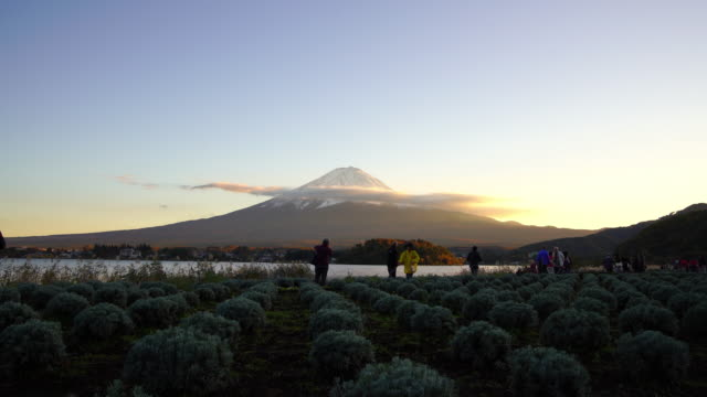 japan nature scene - 山梨県点の映像素材/bロール