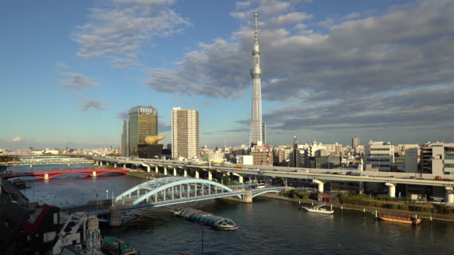 japan, tokyo, city skyline and the skytree on the sumida river at dawn - スカイツリー点の映像素材/bロール