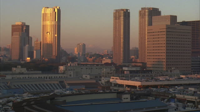 ws, td, cs, japan, tokyo, cityscape and fish market - 2005年点の映像素材/bロール