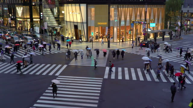 japan, tokyo, ginza, elevated view of sukiyabashi pedestrian crossing - ginza stock videos & royalty-free footage