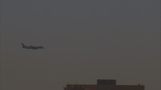 ms, ts, japan, tokyo, passenger jet flying over buildings - carrellata video stock e b–roll