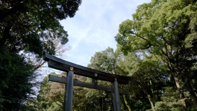 japan torii gate with blue sky at the publick park