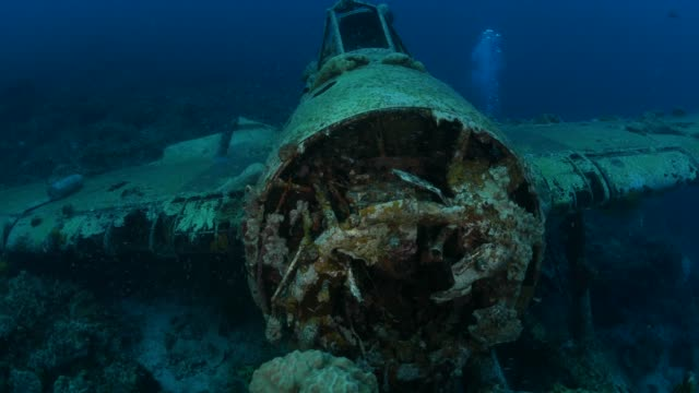 japanese aichi e13a navy seaplane undersea, palau - aereo militare video stock e b–roll
