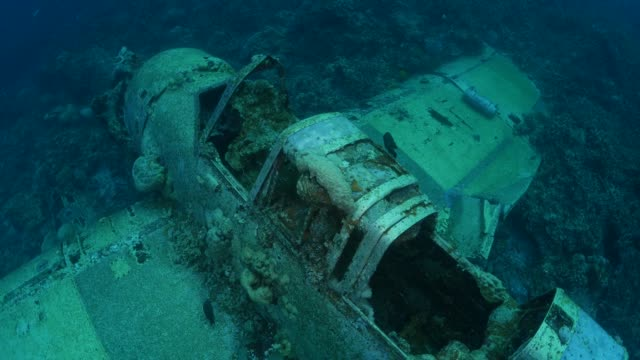 japanese aichi e13a navy seaplane wreck undersea - world war ii stock videos & royalty-free footage