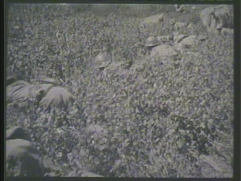 japanese artillery regiment firing artillery cannons vs ija soldiers crawling through grass soldier reloading soldiers moving across field japan war... - regiment stock videos and b-roll footage