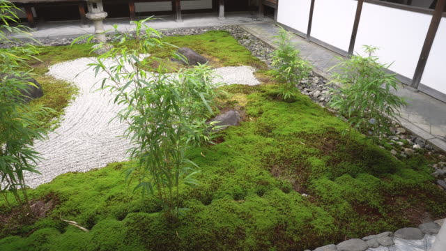 japanese buddhist temple courtyard - shrine stock videos and b-roll footage