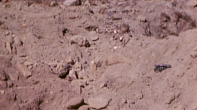 japanese casualty lying in mud pit and marine climbing ridge to cross over / iwo jima japan - schlacht um iwojima stock-videos und b-roll-filmmaterial