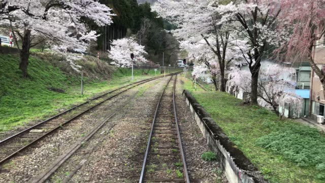 japanese cherry blossom viewing spot in tohoku (4k) - railway station stock videos & royalty-free footage
